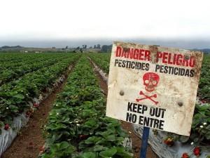 danger-pesticide-sign-300x225